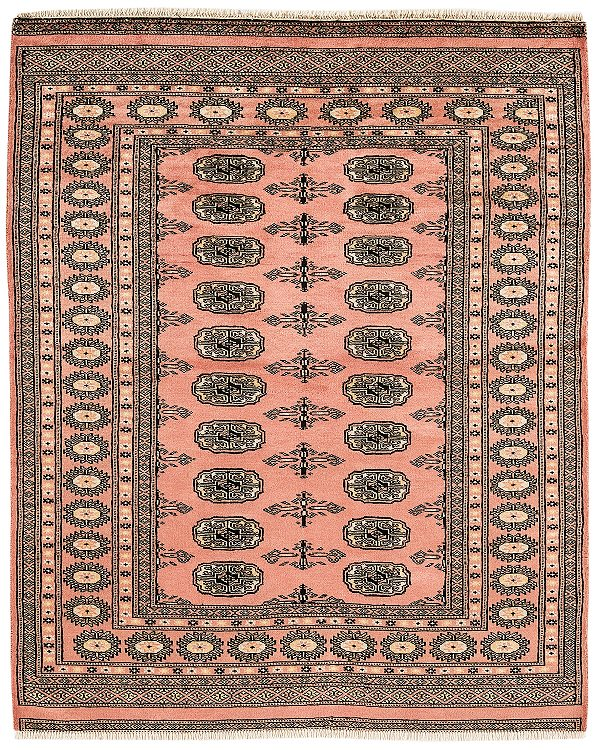Bokhara Pink Rug Traditional Wool Rugs FREE DELIVERY