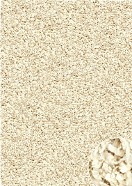 Twilight Rugs Ivory 6926